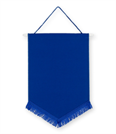 Pack of 10 Royal Chevron Pennants (choice of fringe colour)